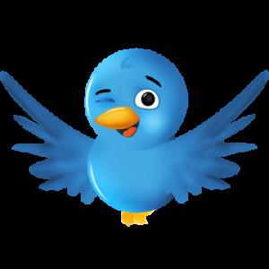 You can always follow us at www.twitter.com/BeachinTenerife