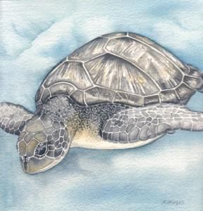 Turtle Dive by Alison Sturgess - Original Artwork